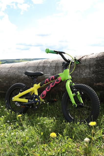 Kindergeburtstag - Geschenkideen - Ollo-Bike - 4. Geburtstag