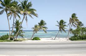 De viajeros por las Islas Cayman 10
