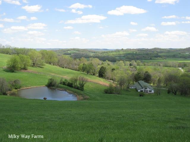 Milky Way Farms, Pulaski, Tennessee
