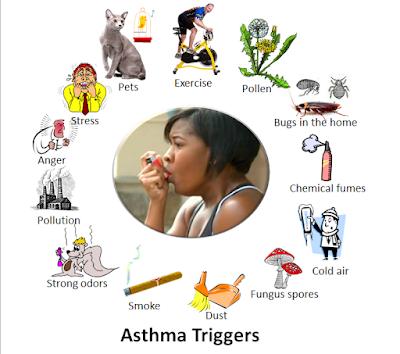 Penyebab Alergi Debu