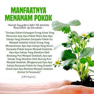 manfaat-menanam-pokok