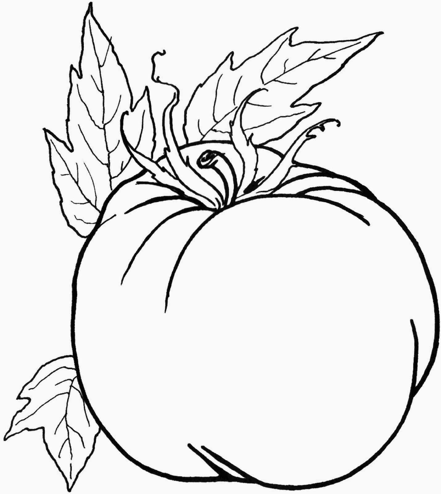 10 Gambar Mewarnai Sayuran Download Gambar Online
