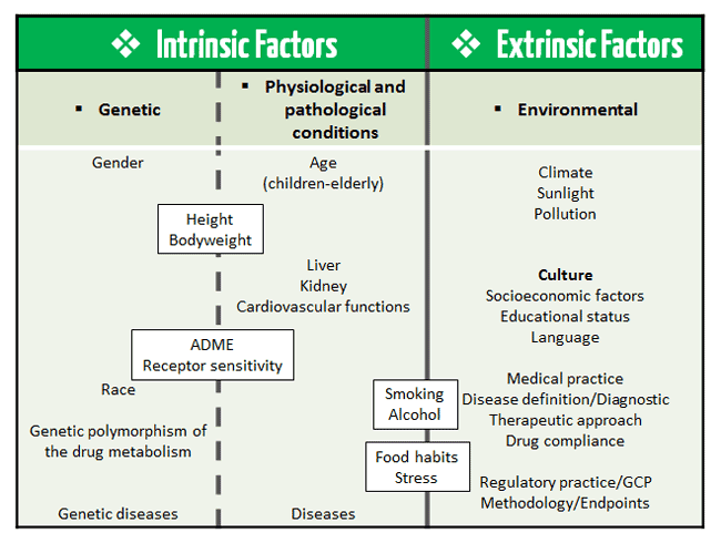 Diagram including intrinsic and extrinsic ethnic factors