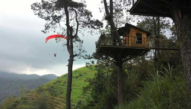 Rumah Pohon Paralayang