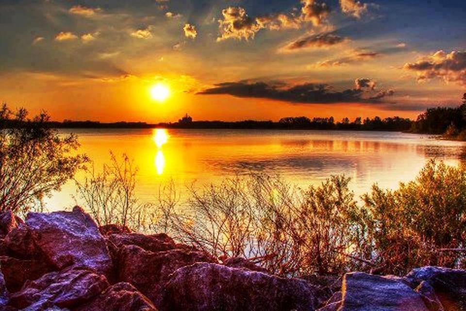 Dulce Arteonline: Bom Dia Com Muita Alegria Neste Lindo