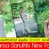 Rahansa Sanuthi's New fashion