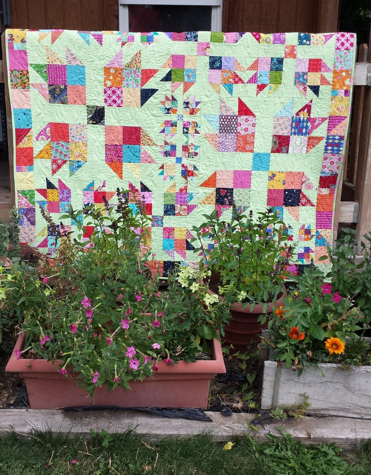 Em 39 s scrapbag my truly scrappy scrappy bear paw quilt for Garden shed quilting