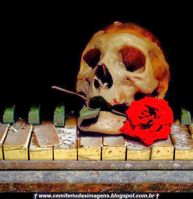 caveira,rosa,vermelha,piano,velho