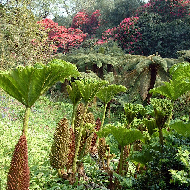 The Lost Gardens of Heligan by bike