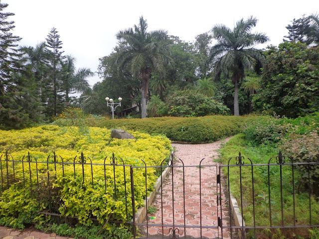 10-Saras-Garden