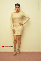 Actress Pooja Roshan Stills in Golden Short Dress at Box Movie Audio Launch  0126.JPG