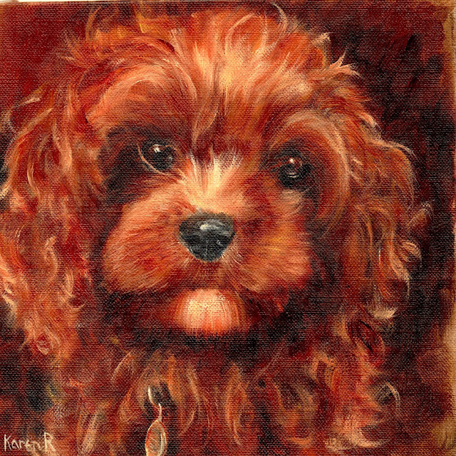 Red Toy Poodle Puppy - an oil painting