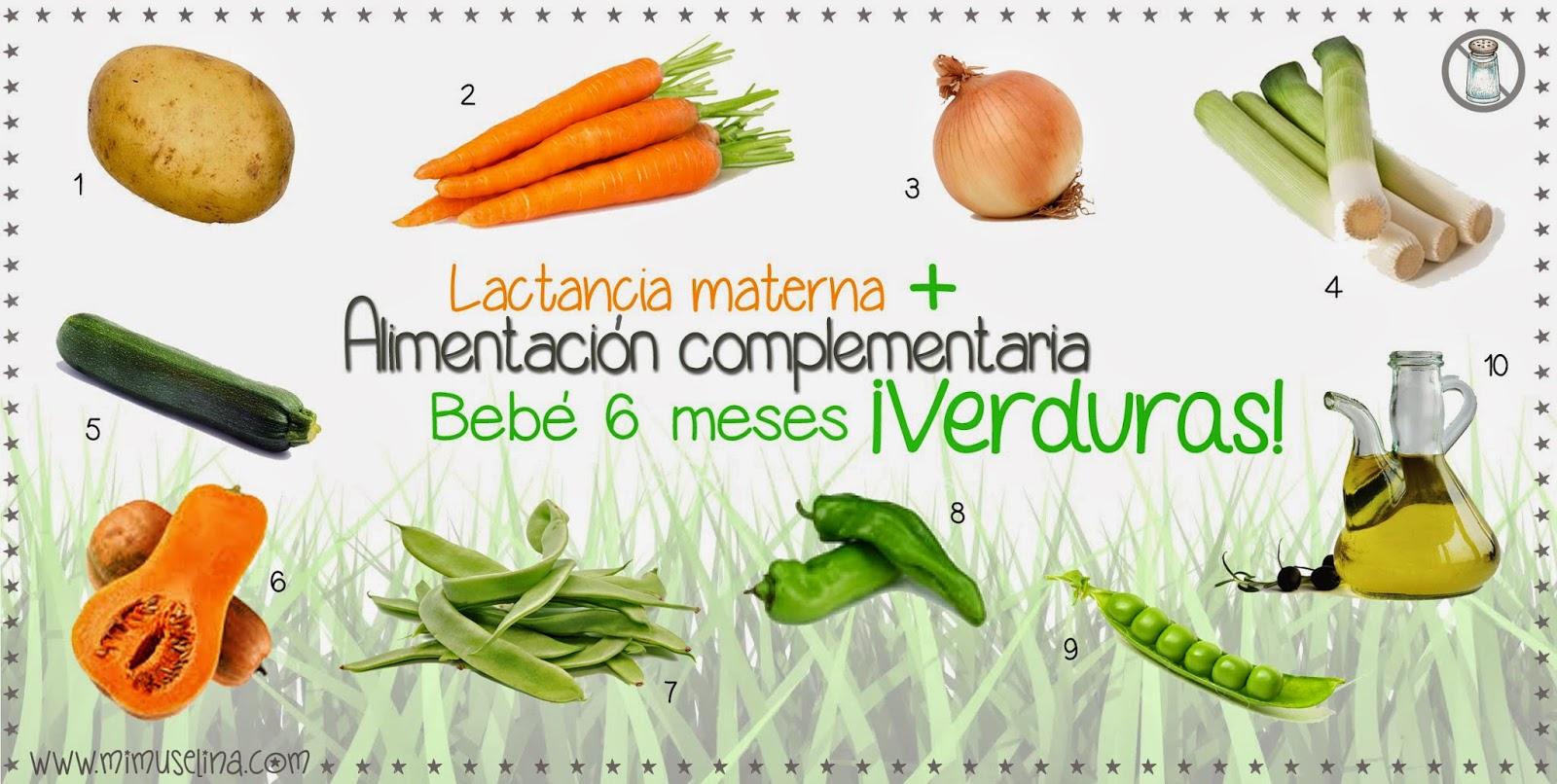 INTRODUCCIÓN DE LAS VERDURAS Alimentación complementaria del bebé 6 meses