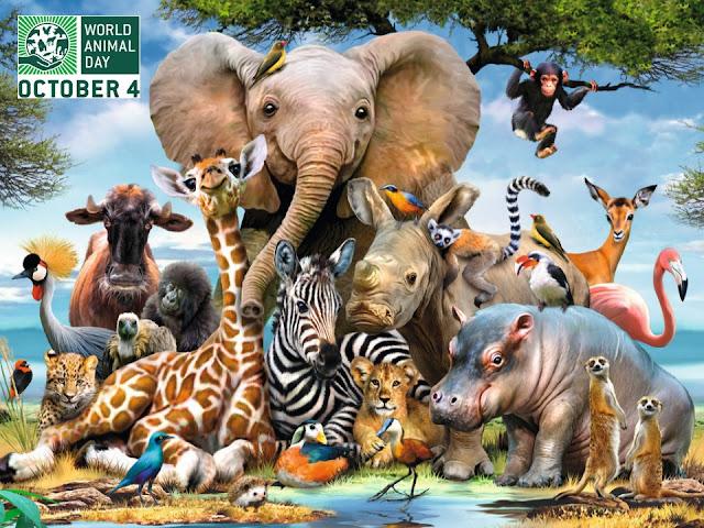 اليوم العالميّ للحيوان, 4 أكتوبر/تشرين الأول, يوم الحيوانات العالمي, اليوم العالمي للحيوانات