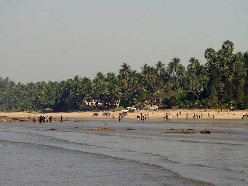 Why Alibaug is a great winter getaway!