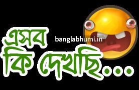 Esob Ki Dekhchi Bengali Funny Comment Sticker