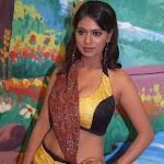 Sexy Actress TejaShree From Tamil Movie Kadhalna Summa Illai