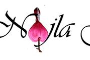 5 Tips Membeli Bunga Via Toko Bunga Online