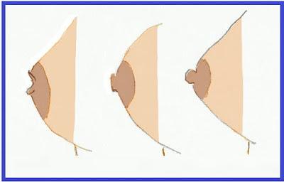 حقائق مثيرة جدا عن الحلمة في الثدي !!