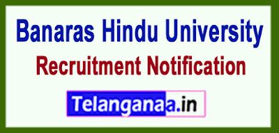 BHU Banaras Hindu University Recruitment Notification