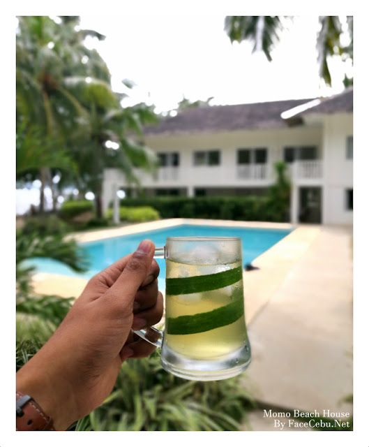 A refreshing Pandan Drinks from Momo Beach House, Bohol