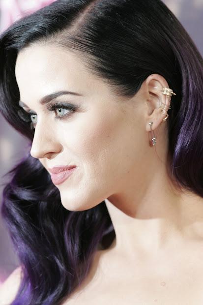 Pawcakese Katy Perry