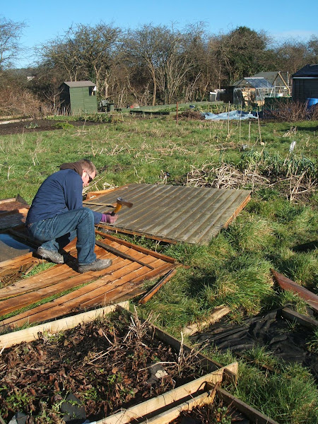 storm imogen demolishes our allotment shed we finish the job off with an axe