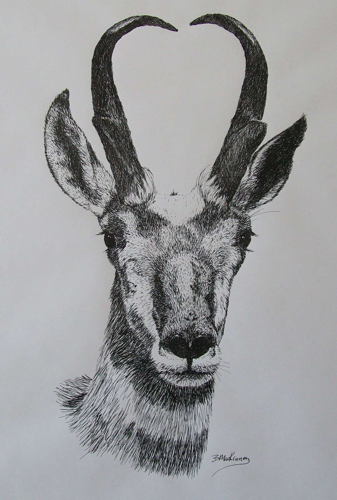 All Things Art Pen And Ink Gallery