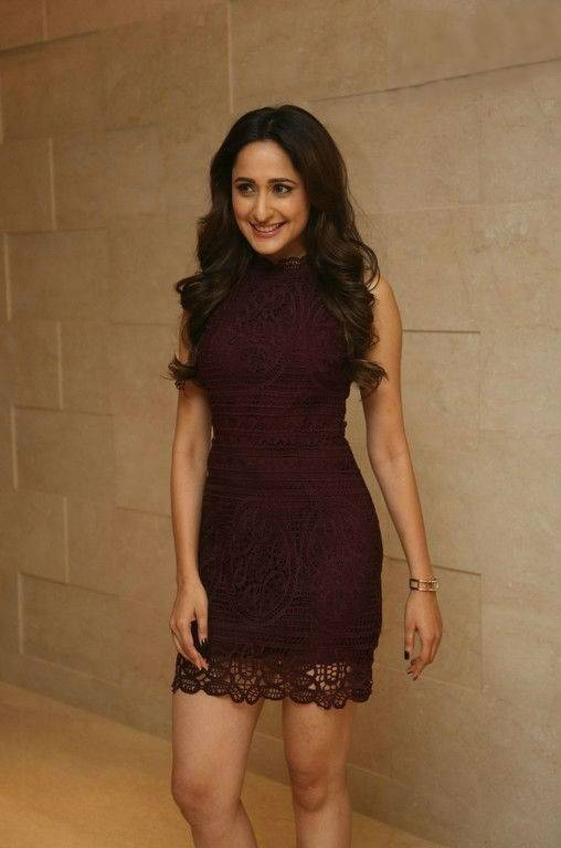 Actress Pragya Jaiswal Long Hair Stills In Maroon Dress