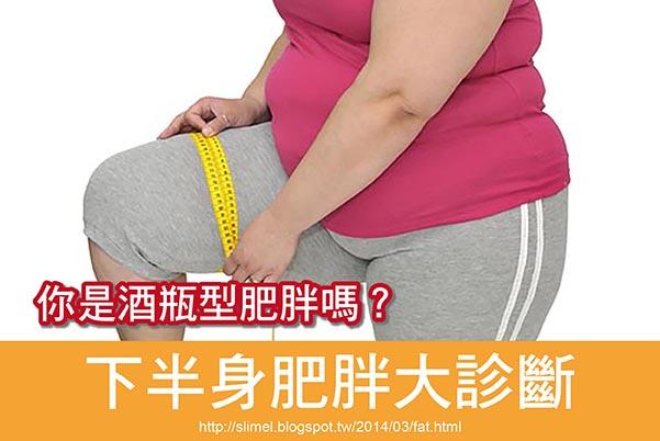 酒瓶型肥胖區域:腰部~小腿,整個下半身全部肥胖。 酒瓶型肥胖族群:青春期、更年期的女性居多。  形成酒瓶型肥胖的主要原因: 女性《荷爾蒙失調》或《荷爾蒙分泌不足》所造成!