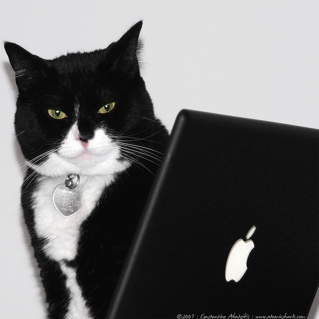 pixie, macbook guardian by atomicshark from flickr (CC-NC-SA)