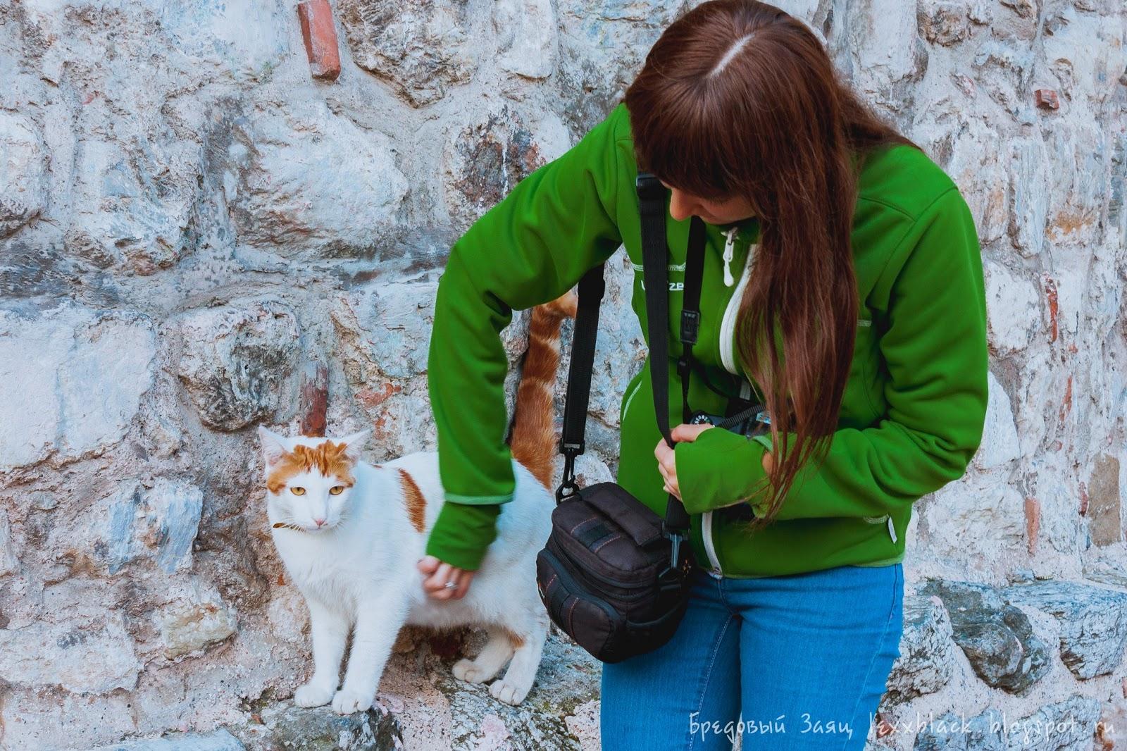 Красивые картинки Леди Баг и Супер-Кот (24 фото