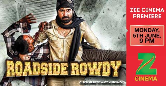 Roadside Rowdy (2016) Hindi Dubbed Movie Full HDRip 720p