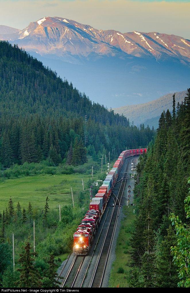 Locomotiva e Trem