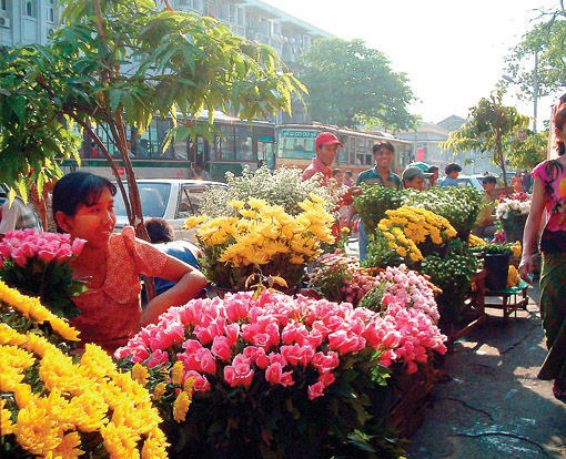 Anawrahta Street Flower Market