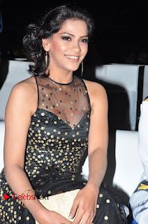 Actress Zabyn Khan Stills in Long Dress at 9th Edition Epicurus Indian Hospitality Awards .COM 0008.JPG
