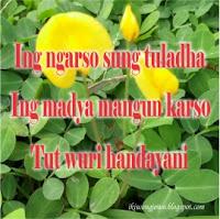 Ing ngarso sung tuladha, ing madya mangun karso, tut wuri handayani
