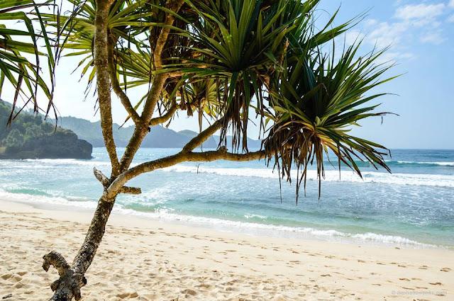 pantai srau, pantai pasir putih mengagumkan banget