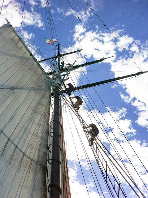 crew of the Californian climbing up the rigging