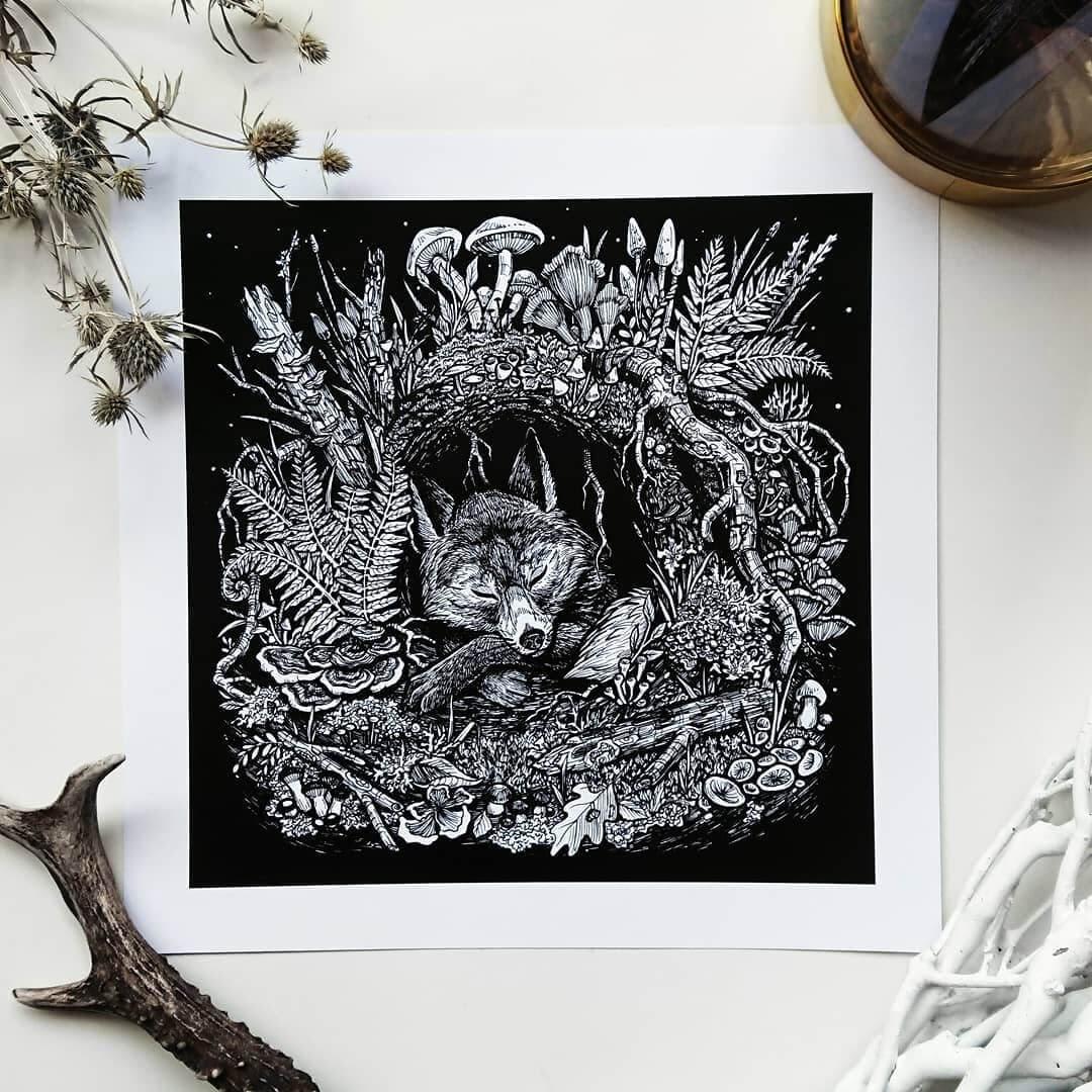 13-Fox-in-the-den-Weronika-Kolinska-Black-and-White-Animal-Ink-Drawings-www-designstack-co