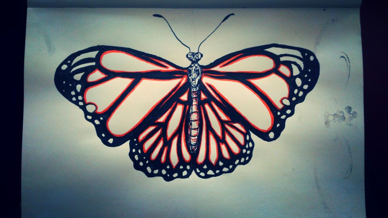 21 mooie kleurrijke vlinder - photo #43