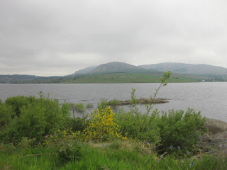 View of  Clatteringshaws Loch with distant mountains, Clatteringshaws, Scotland