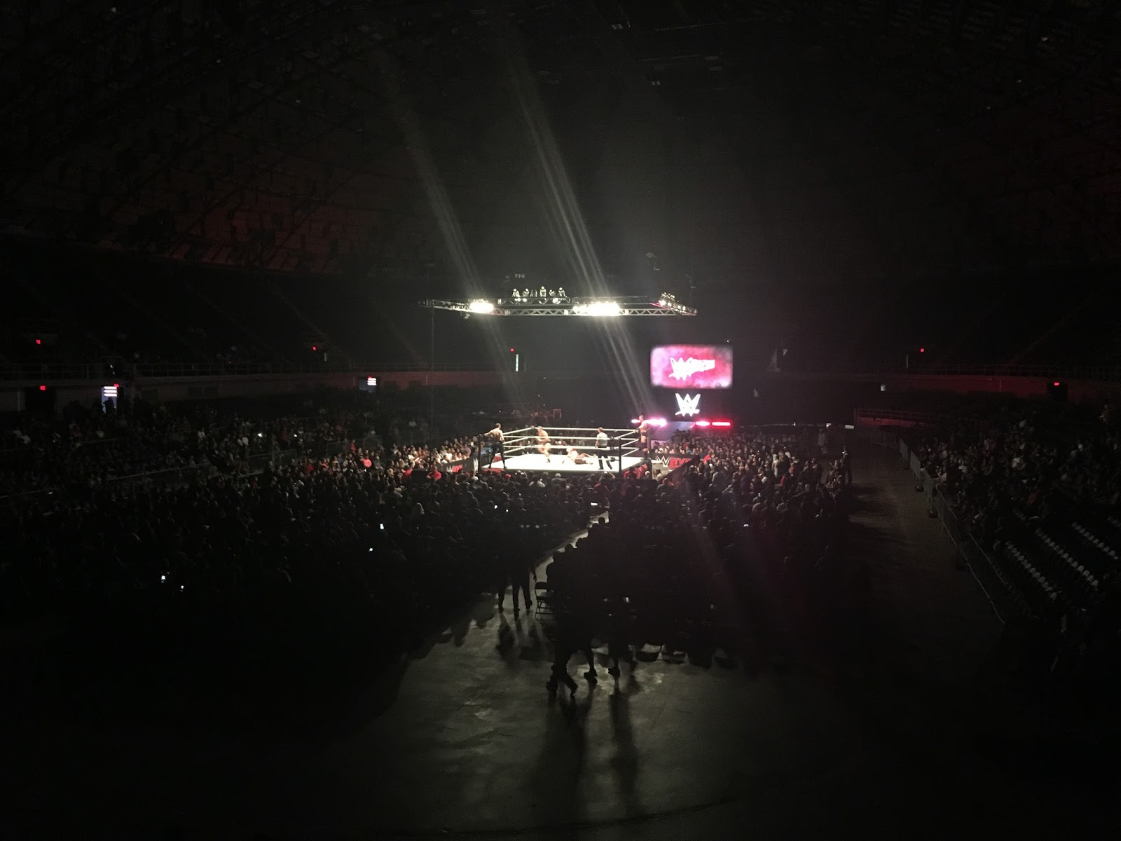 experience wwe live family love in my city