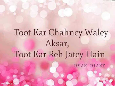dear diary urdu poetry, love quotes, thoughts and silent words 17
