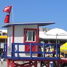 Sharks Close Beach At Cocoa Beach Pier