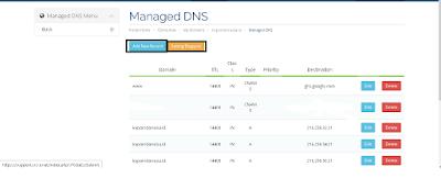 Pilih Managed DNS dan pilih Add New Record