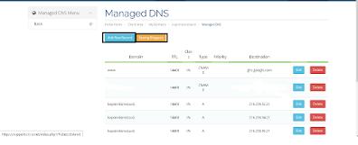 5. Setelah itu buka settingan domain, dan pilih Managed DNS dan pilih Add New Record