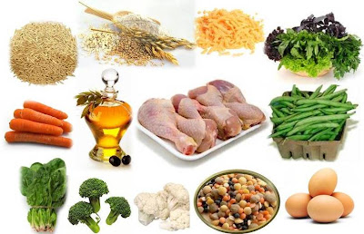 What Grains Are Removed From Grain Free Dog Food