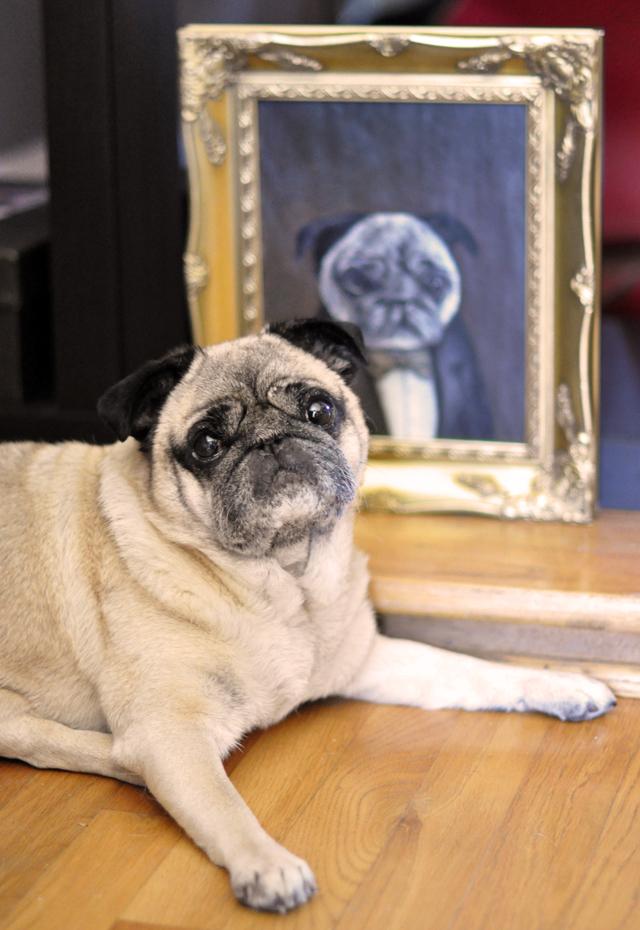 Custom Victorian Pet Portraits By Luke Jervis Love Maegan