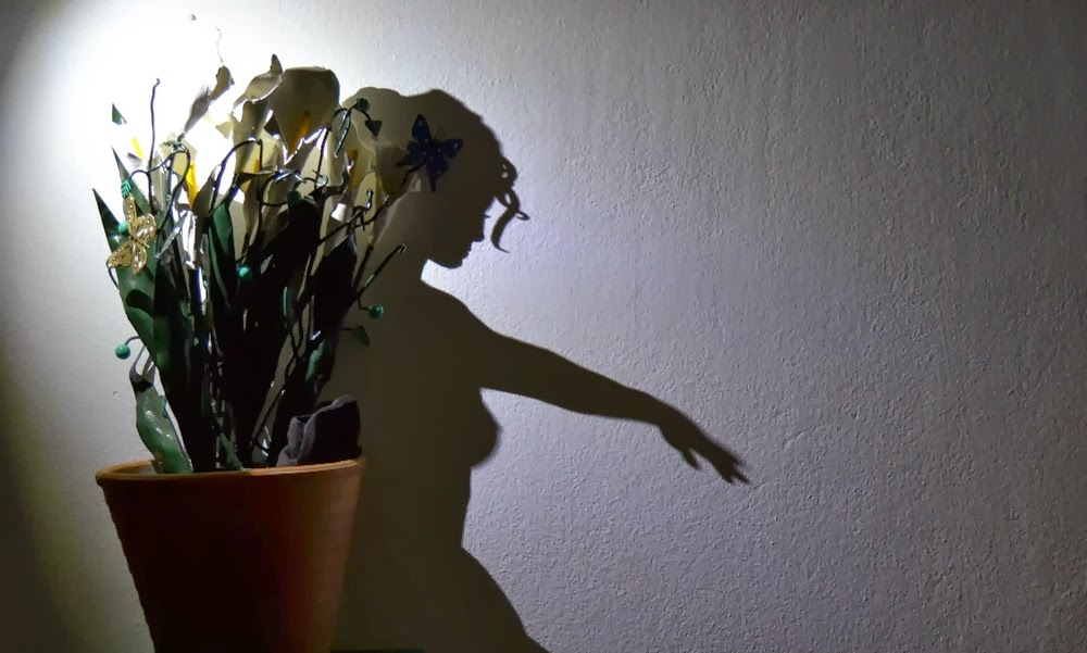 03-Juliet-emerges-from-the-flowerpot-Teodosio-Sectio-Aurea-Shadow-Art-www-designstack-co